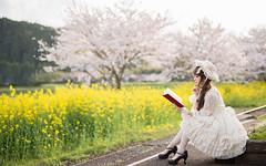 DSC_9577 (nana_tsuki) Tags: