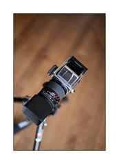 focus test [Leica M-P Type 240] (Istvan Penzes) Tags: availablelight rangefinder handheld manualfocus cameraporn penzes leicasummilux50mmasph leicamptype240