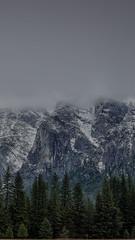 coming round the mountain. (thotran7989) Tags: california park trees snow mountains nature fog clouds forest landscape nationalpark yosemite yosemitenationalpark yosemitevalley