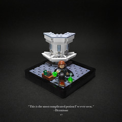 017 - The Polyjuice Potion (roΙΙi) Tags: harrypotter chamberofsecrets hermione bathroom polyjuice sink hogwarts rowling bricks magic vignette