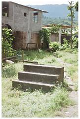 Escaleras (Patrick J. Negwer) Tags: dog naturaleza verde green dogs nature water rio river waterfall ecuador agua perro perros cascadas mindo nambillo