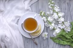 (donna leitch) Tags: flowers stilllife lemon tea tabletop donnaleitch