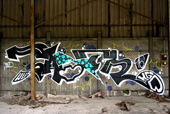 saner (SaNeR hVa KgB) Tags: terrain paris france art colors wall writing painting graffiti decay tag letters can spot peinture abandon writer lettering graff aerosol typo mur couleur bombe abandonned lettres negatif kgb wildstyle urbex hva handstyle vierge lettrage friche saner ptdq