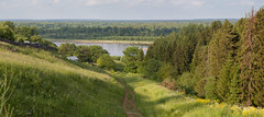 Hello, summer! (v.moreev) Tags: summer nature june river russia walk meadows vyatka warmevening downtotheriver thevillageofred