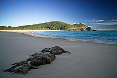 Elizabeth Beach, NSW (noompty) Tags: ocean beach elizabeth pentax wideangle cc nsw k1 carlzeiss zk distagont2821 on1pics