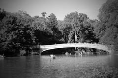 IMG_2962 (evafernndez1) Tags: newyork centralpark