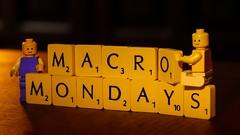 Macro Mondays - Anything Goes (Yasmine Hens) Tags: game europa flickr play lego belgium letters ngc scrabble hmm anythinggoes jeu namur hens yasmine wallonie macromondays iamflickr flickrunitedaward hensyasmine