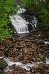Mohican Falls (Alan Amati) Tags: falls glen kitchen mohican pennsylvania ricketts spring water waterfall waterfalls amati alanamati america usa us trail hike path rain mist nature natural fall stream creek