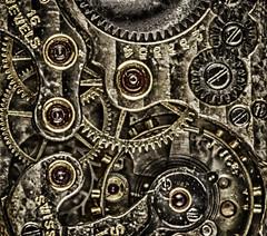 1950's wristwatch workings (macro) (gizmo-the-bandit) Tags: wristwatch cogs 1950 workings