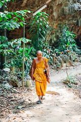 Buddhist monk walking through the rainforest (Evgeny Ermakov) Tags: travel orange man green tourism nature look forest walking asian thailand religious temple see rainforest asia southeastasia walk buddha buddhist traditional religion culture buddhism exotic tropical southeast krabi touristic buddhistic tigercave tigercavetemple editorialuse