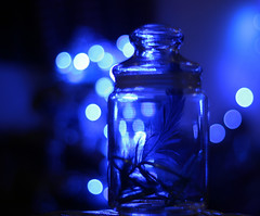 and everything burned in blue, everything a star (Synthia Mazumder) Tags: blue night star bokeh memories feather jar bangles