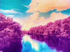 Desna river IR (Dr. Alex O Chevtchenko) Tags: film kodak hasselblad infrared 60mm 6x45 e6 carlzeiss orangefilter aerochrome 205tcc