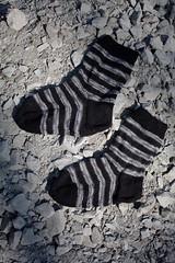 Black and grey striped socks (II) (dididumm) Tags: black wool socks grey knitting stones gray knit grau socken steine selfmade schwarz striped handcraft stripy gestreift wolle stricken handarbeit geringelt stricksocken