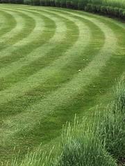 Curvy (Phil Gyford) Tags: frintononsea essex uk grass mowing stripes frinton lawn curved