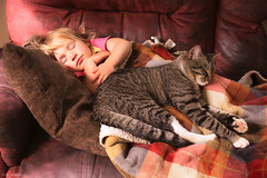 Nap time...moments (Marla Nutbrown) Tags: love girl cat nap little sweet naturallightphotography marlanutbrownphotography