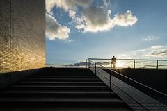 DSC04605.jpg (kujira_) Tags: roof sunset terrace 16mm walkerartcenter a6000