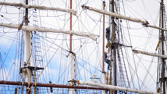 Spider-Women_97810 (tombomba2) Tags: ships transport vehicles transportation sailboats verkehr schiffe fahrzeuge segelboote beförderung