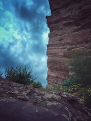 """the end of creation (listening to """"let him fly"""", patty griffin) (jeneksmith) Tags: flowers blue red sky green nature yellow clouds twilight colorado natural dusk wildflowers bluehour nightfall gloaming iphone redrocksamphitheater creationrock iphoneography iphone6 snapseedapp"""