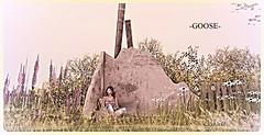 -broken wall (chanell.resident) Tags: home broken wall garden mesh goose lostdream