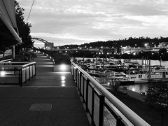 View of the Marina (Paul McCarthy...) Tags: marina pittsburgh sony visitpittsburgh hx300