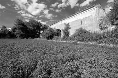 Wieshof (Jules Marco) Tags: blackandwhite bw building clouds canon austria sterreich ruin wolken ruine gebude niedersterreich waldviertel eggenburg loweraustria ruinous verfallen schwarzweis woodquarter wieshof sigma1020mmf35exdchsm eos600d