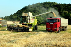 Claas Lexion 750 - Scania 112 (Falippo) Tags: barley truck landscape farm harvest campagna camion scania orzo lkw unloading combineharvester autocarro claas lexion raccolta agricolture mietitrebbia scania112 lexion750