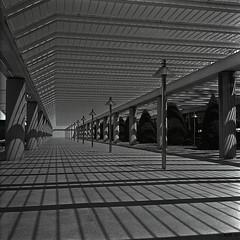 Shadow Lines (ucn) Tags: shadow blackandwhite bw rolleiflex airport sw rodinal schwarzweiss mallorca schatten 1100 standdevelopment schwarzweis mxevs film:iso=80 rolleiretro80s film:brand=rollei developer:brand=adox adoxadoluxaph09 developer:name=adoxadoluxaph09 film:name=rolleiretro80s filmdev:recipe=8647