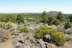 Arizona 314 (criggle1) Tags: arizona parks lanscapes