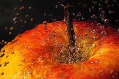wet appleication (ekkiPics) Tags: macro apple wet water droplets drops nikon flash monday app extensions 10mm d80 strobist macromondays