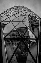 Triangulated Perimeters (faranorclarke) Tags: bw reflection london architecture nikon sigma 1020mm 1020 gherkin thegherkin lightroom arup skanska d90 fosterandpartners 30stmarysaxe