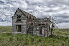 Abandoned in eastern Washington state (NikonDigifan) Tags: abandoned farmhouse rural landscape spring nik agriculture decomposition delapidated palouse palousehills farmscape colorefexpro nikond300 mikegassphotography