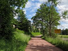 Breitenbach (philipp h.) Tags: road sign forest way thringen holidays hiking urlaub thuringia schild biking wald fahrrad wandern weg schotter breitenbach thringerwald stkilian strase ziegenrck vessertal