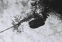 Parti au ciel (CroytaqueCie) Tags: sky blackandwhite film analog photography shoes photographie fil ciel analogphotography chaussures argentique shoez filmphotography 佳能 filmisnotdead キヤノン filmshooters イルフォード croytaque believeinfilm flickrandroidapp:filter=none croytaquecie