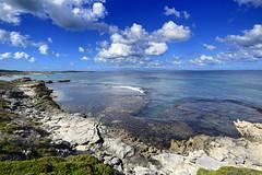 Rottnest Island 0398 1