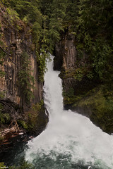 toketee falls (larryhendler) Tags: oregon waterfalls craterlake elk icicles californiacoast snowontrees craterlakenationalpark watsonfalls clearwaterfalls toketeefalls whitehorsefalls