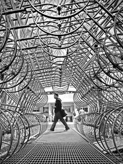 Forever Bicycles (Mr.  Mark) Tags: deleteme5 deleteme8 bw toronto man deleteme2 deleteme3 deleteme4 deleteme6 deleteme9 art deleteme7 monochrome bike bicycle photo saveme4 artist saveme5 pattern saveme6 saveme saveme2 saveme3 cityhall saveme7 deleteme10 geometry walk web stock perspective installation nuitblanche iphone nathanphillipssquare deleteme1 aiweiwei markboucher