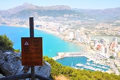Danger (fhmolina) Tags: costa bird praia beach mar spain espanha sunny blanca branca calpe dourada penyal difach penyaldifach