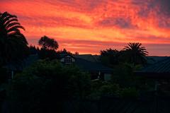More sunsets (XPinger (Chris Sutton)) Tags: rotorua sunsetssunrises topazadjust