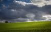 grassland (bernd obervossbeck) Tags: sky green landscape wiese himmel grassland landschaft sauerland landscapephotography hochsauerland landschaftsfotografie mygearandme