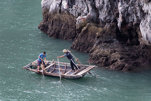 2013-11: Halong Bay: Fishing