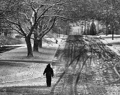 dark snowy day in akron on thornton (Lanamcara) Tags: blackandwhite snow winter pregamewinner challengefactorywinner gamewinner ispywinner agcgwinner gamex2 challenge you challengeyouwinner cyunanimous gamex3 photoquestchallenge monthlygamewinnergameon a3b a3bchallengewinner storybookchallengewinner bbqatgrandmashousewinner superherochallengegroupwinner