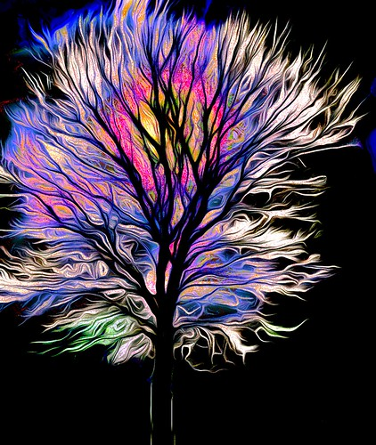Colorful Tree Blue