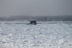 Niagara Falls Deep Breeze (William Wilson 1974) Tags: winter snow cold ice water niagarafalls boat pretty tugboat tug wonderland tugs niagarariver niagarafallsny