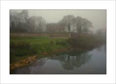 Reflets dans la brume ( On Explore #127, 25 January, 2014)