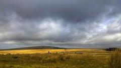 Dartmoor (Sean Paull) Tags: cloud nokia nationalpark scenery devon dartmoor hdr lumia uploaded:by=flickrmobile flickriosapp:filter=nofilter lumia1020