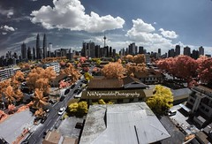 Kuala Lumpur Autumn Infrared (Nik Najmuddin Nik Ariff) Tags: autumn tower malaysia infrared kualalumpur klcc twintower kltower kampungbaru kgbaru poknik poknikphoto autumninfrared niknajmuddin