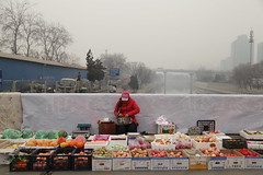 IMG_0848 beijing fruit seller beijing (Jordan Pouille JOURNALIST) Tags: china fruits vegetables smog air hiver riviere beijing route pollution capitale lgumes chine chinoise pekin vendeur vendeuse primeurs