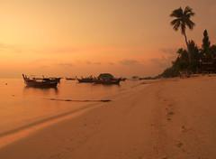 Sunrise Beach (nschleheck) Tags: ocean travel sunset sea holiday tree tourism beach water yellow sunrise thailand boats island boat sand asia paradise south palm east koh lipe sunrisebeach cywinner fotocompetitionbronze cyunanimous
