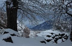 c'est beau avec la neige...