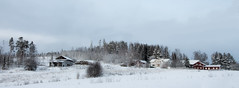Goes far, flies near (Kalense Kid) Tags: winter panorama snow landscape sweden settlement farmstead skedvik